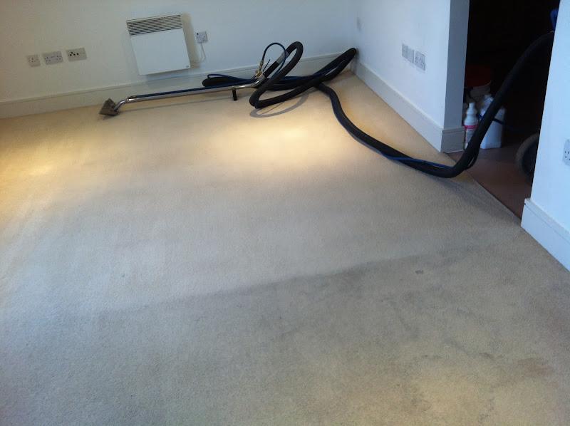 Domestic - Carpet%2BCleaning%2BIpswich%2B-%2BCopy.JPG