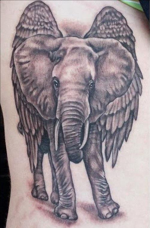 elefante_tatuagens_25