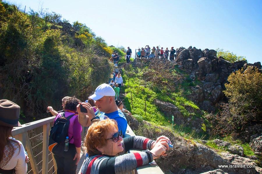 Экскурсия в Верхней Галилее и по Голанским высотам на водопаде Саар.
