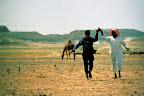 Les déserts d'Arabie ne sont jamais tout à fait déserts.