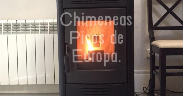 Chimeneas picos de europa aparatos de pellets foto - Chimeneas picos de europa ...