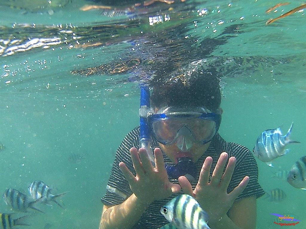 family trip pulau pari 140716 GoPro 57