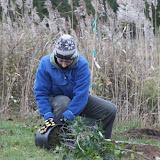 Hammo Fall Planting - Jim Murtagh - BC3G2539.jpg