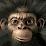 Salvador Gallardo's profile photo
