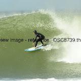 _DSC8739.thumb.jpg