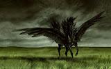Fantasy Schwarzer Pegassus