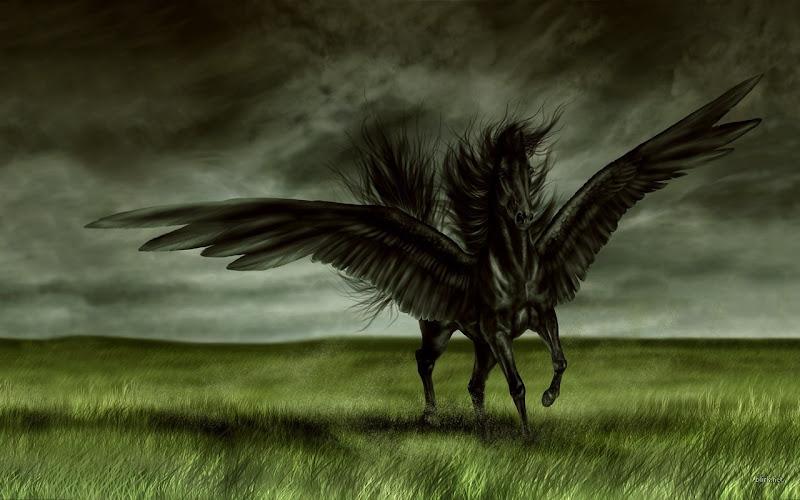 Fantasy Schwarzer Pegassus, Magic Animals 2