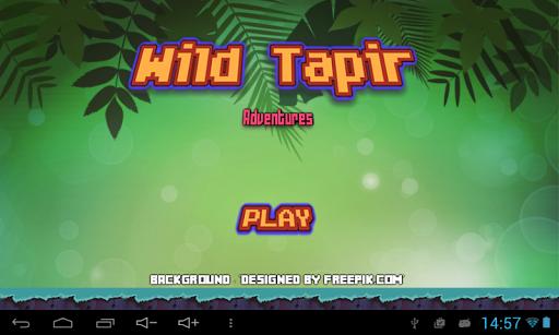 Tapir Adventures