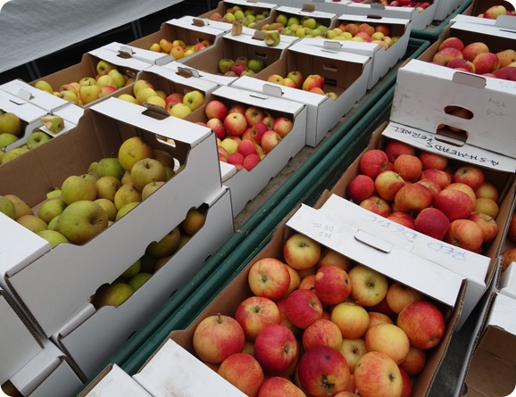 Apples grown at Reaseheath College sale