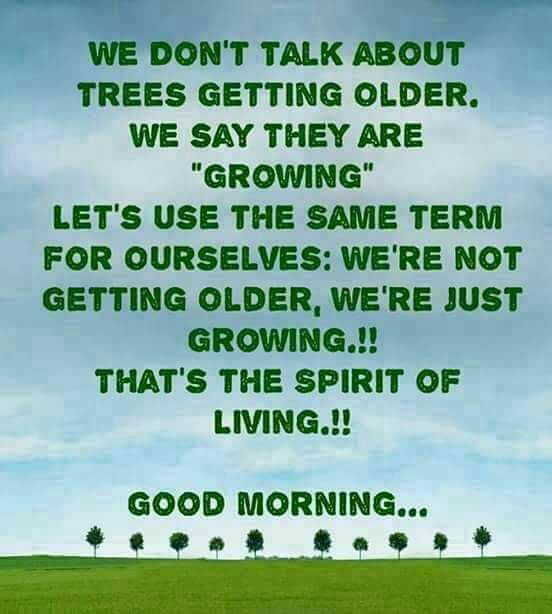 Whatsapp Good Morning Love Images: Good Morning Images With Quotes For Whatsapp In English