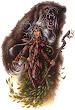 Druids Soul