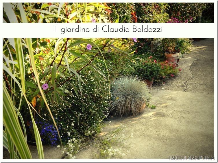 Il giardino di Claudio (25)