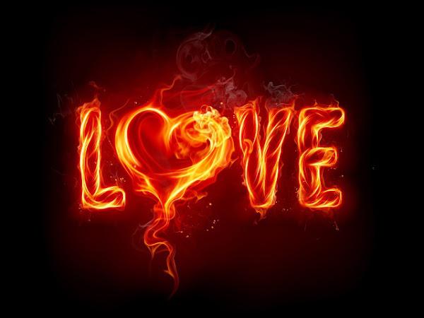 Valentinovo besplatne ljubavne slike za mobitele 640x480 čestitke free download Valentines day 14 veljača love