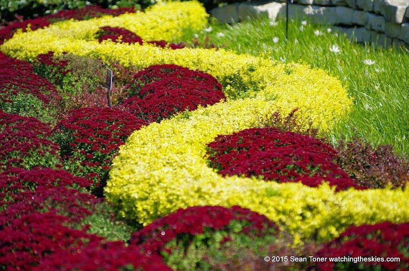 10-26-14 Dallas Arboretum - _IGP4307.JPG