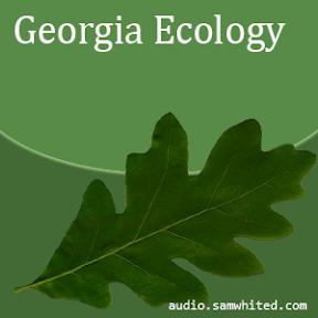 Georgia Ecology cover