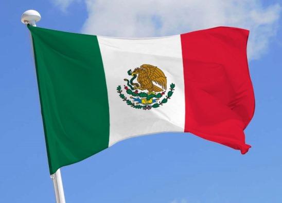 Bandera de México ondeando 5