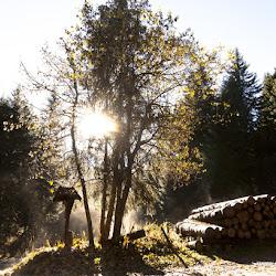 Karersee Singletrailtour 27.10.16-8122.jpg