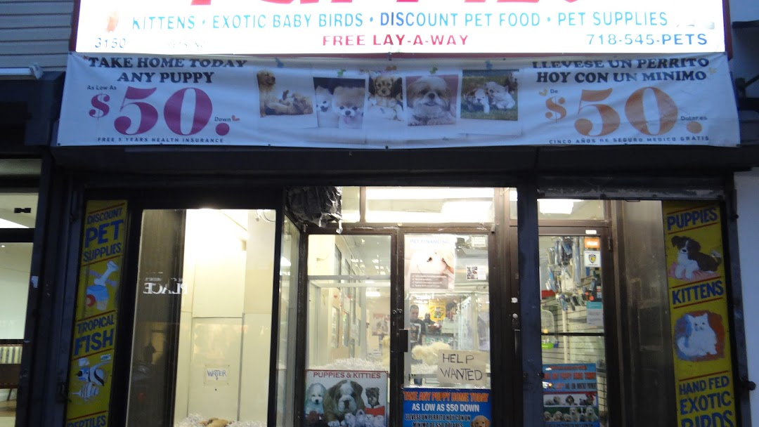 ASTORIA PETS - Pet Supply Store in Long Island City