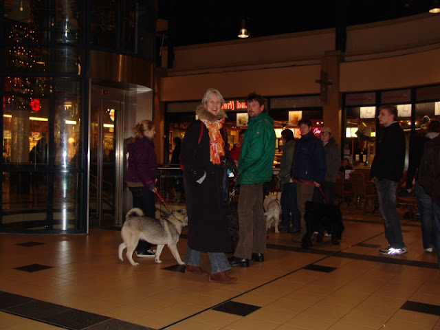 KNON puppys in de stad nov 2008 - DSC09017.JPG