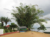 Baganara Island, located in the middle of the Essequibo River, one of the largest rivers in South America.