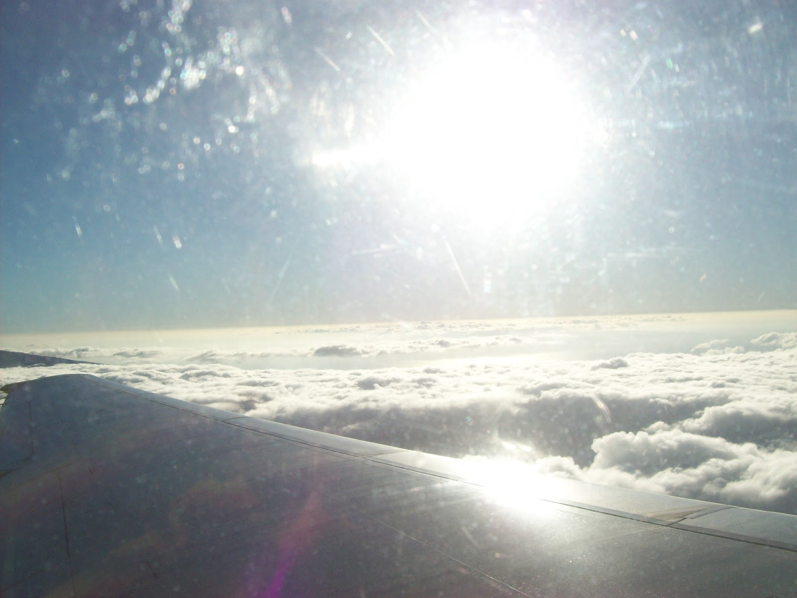 Hawaii Day 8 - 100_8201.JPG