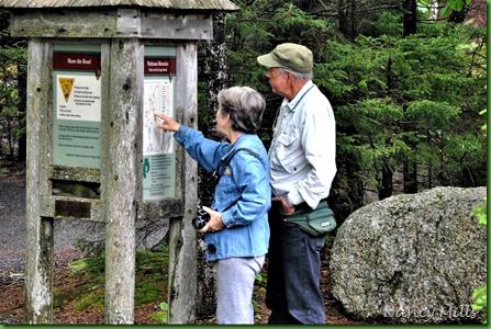 2017-6-17 12 Maine - Rainy - Hike  to Carriage Road Bridges & Waterfall