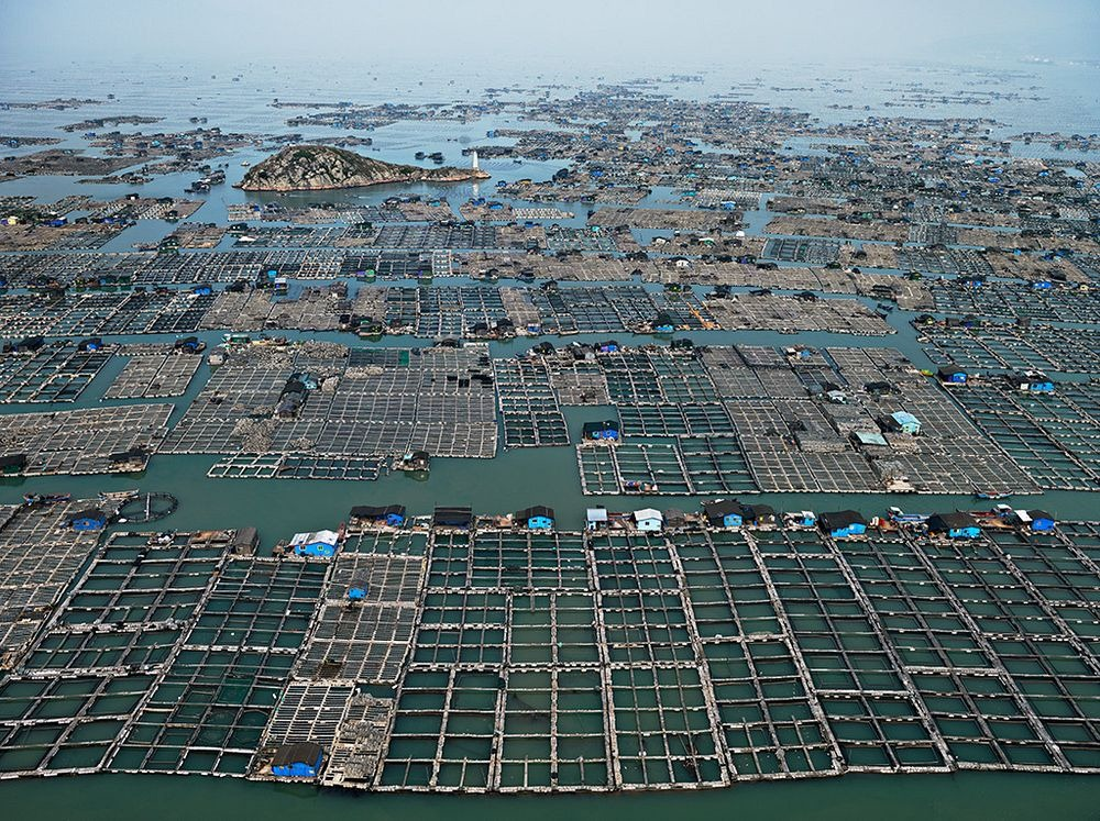 aquaculture-farm-china-2