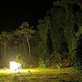 Collecte nocturne. Gîte Moutouchi. Photo : Moutouchi-Guyane