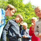 Welpenkamp Ruisbroek 2016 - DSCN1350.JPG