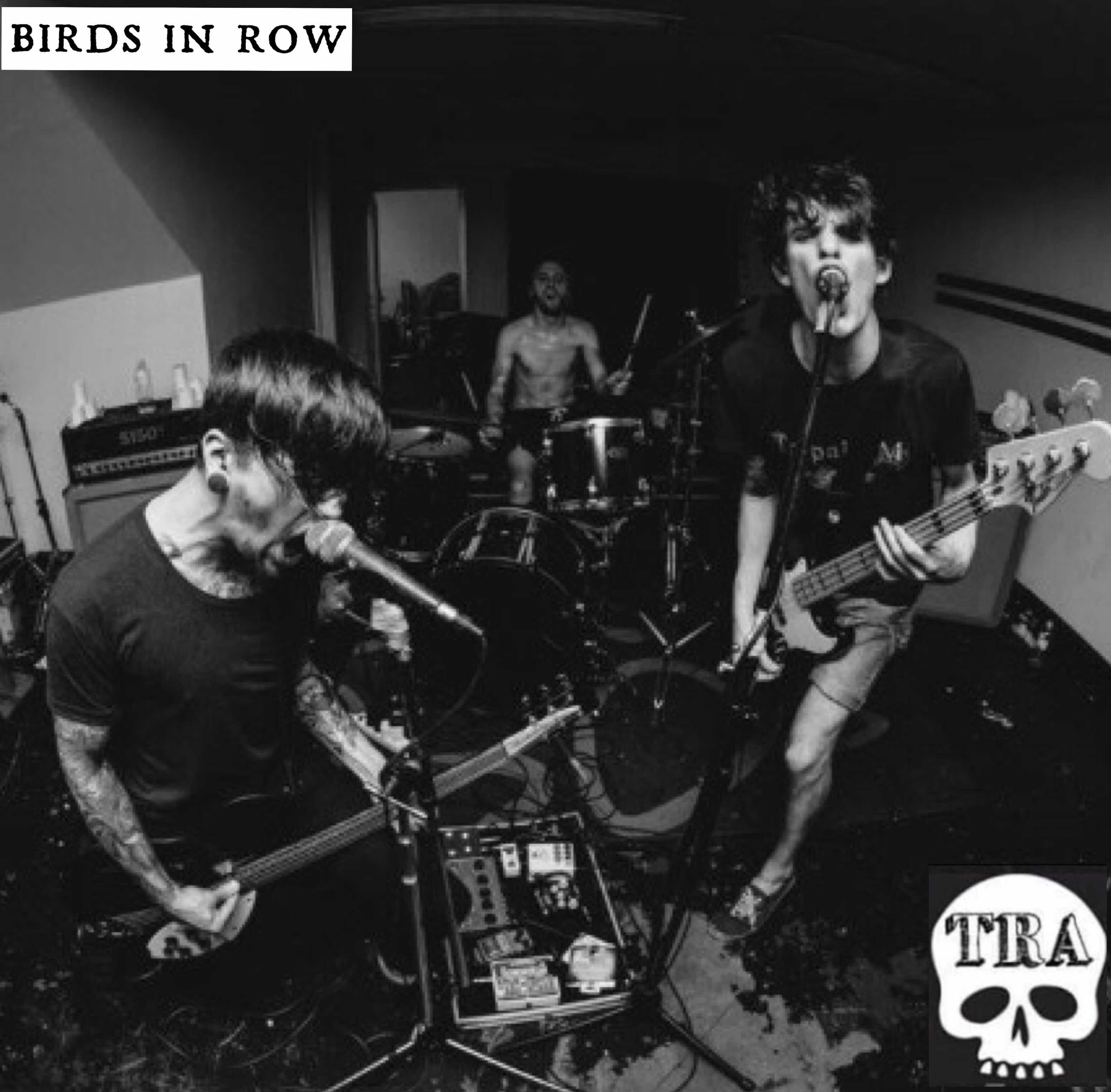 BOTM - November - Birds In Row