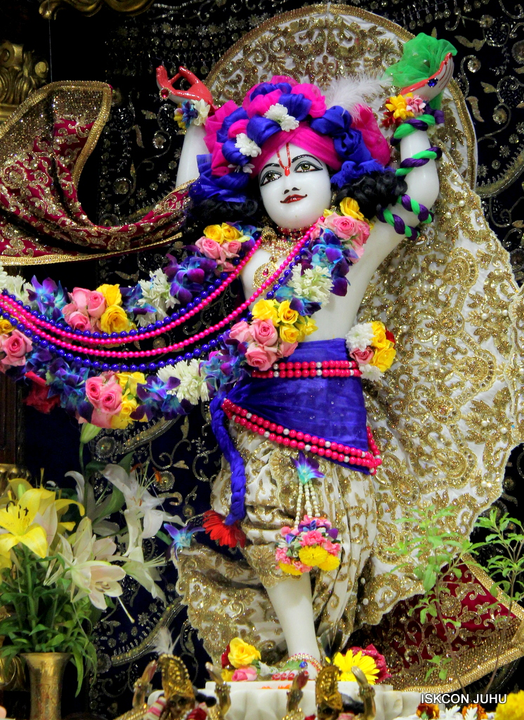 ISKCON Juhu Sringar Deity Darshan on 24th Oct 2016 (40)
