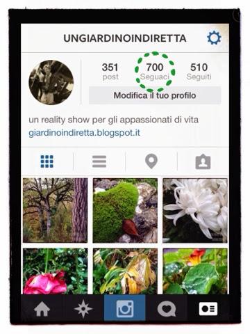 Un giardino in diretta su Instagram