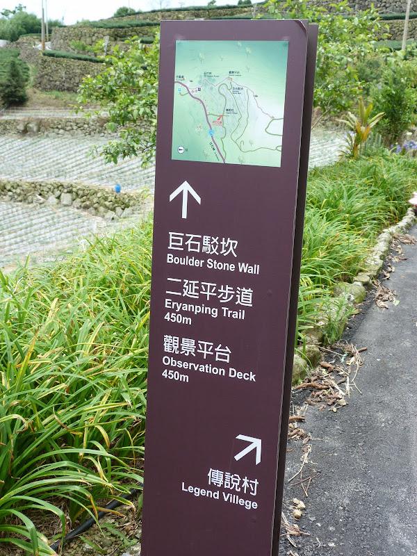 TAIWAN  Dans la region d ALISHAN - P1130878.JPG