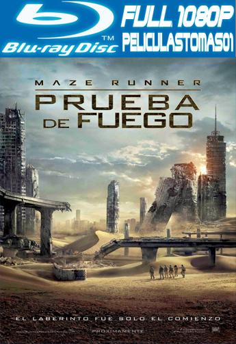 Maze Runner 2: Prueba de Fuego (2015) BRRipFull 1080p