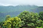 Nature   Vasai-Virar