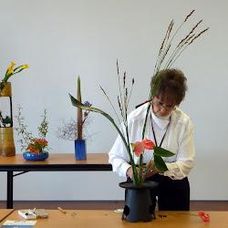 Wellington Ikebana Activities 2012-13-14