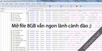 EmEditor 13 Full Key – Phần mềm mở file dung lượng lớn mượt mà [Max 248GB]