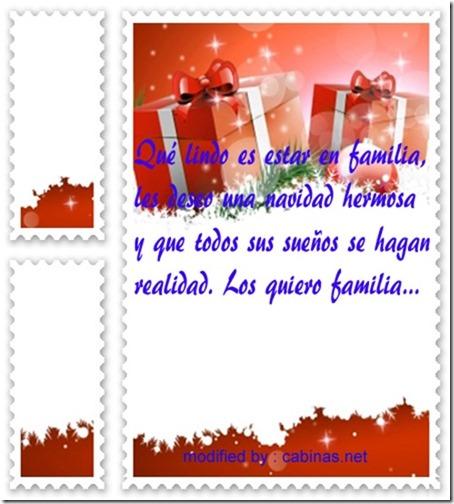 navidad (213)