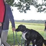 Survival voor Baas en Hond 2012 - DSC_0681.JPG
