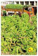 DSC_0013_keralapix.com_banana market