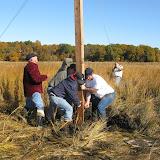 Guilford Salt Meadow Sanctuary Osprey Platform - sfs%252C10-25-09%2Bosprey%2Bplatform%2Binstall%252C028.JPG