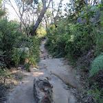 Walking along Chowder Head (261809)