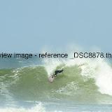 _DSC8878.thumb.jpg