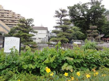 <br /> 戸塚宿上方見附跡 旧東海道五十三次