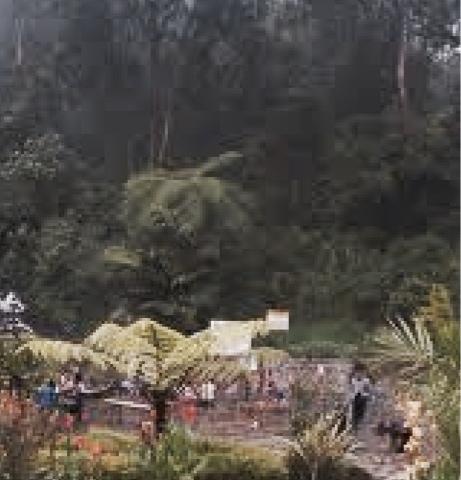 Awas!, Dinyatakan Kawasan Tanah Gerak, Wisata Pacet Rawan Longsor
