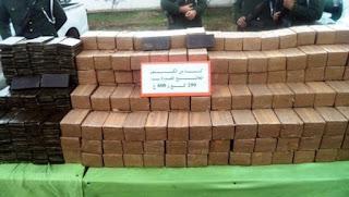 Lutte contre la criminalité: saisie de 342 kg de kif traité à Tlemcen et Mostaganem (MDN)