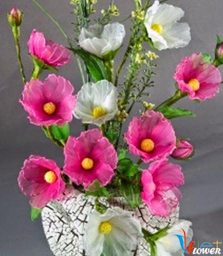 chậu hoa tường vi màu hồng và trắng bằng vải voan
