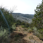 Some fairly steep sections on Farm Ridge Trail (289450)