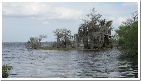 2016-03-13 Florida, Blue Cypress Lake - Scenes (1)