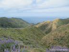 Views of Pacific overlooking Sobaranes Canyon